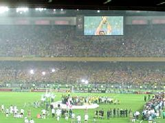 決勝ブラジルxドイツ2 (640x480, 146Kb)